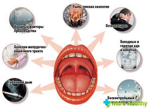 профилактическое лечение глистов