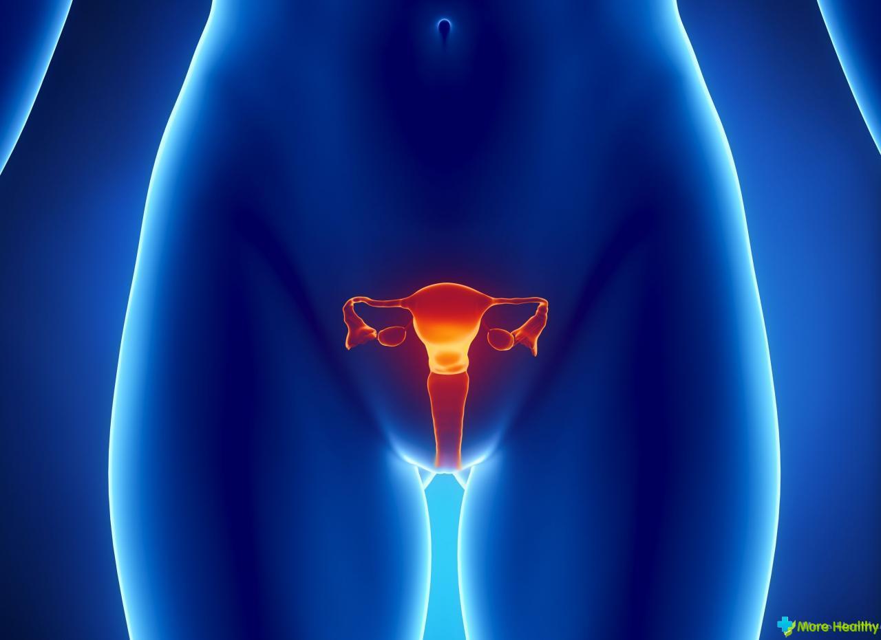Фото половых органов полных женщин 23 фотография