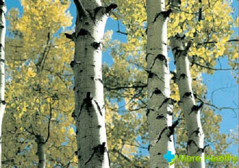 Видео Лечение простатита корой осины