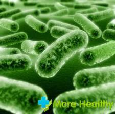 лечение инфекционных болезней
