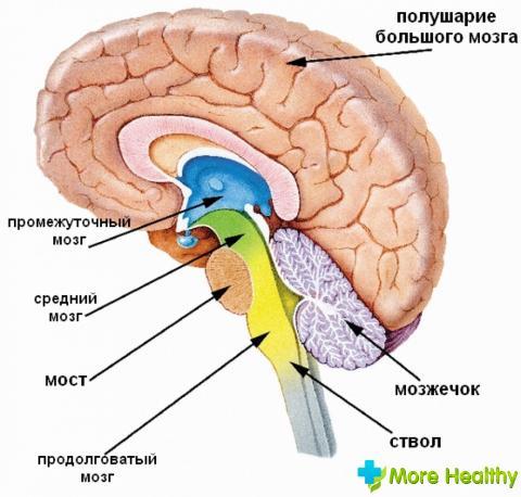 Как лечить нарушение венозного оттока головного мозга 🚩 симптомы нарушение венозного оттока головы лечение 🚩 Заболевания